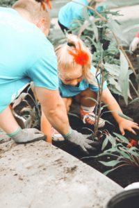 Teach Planting