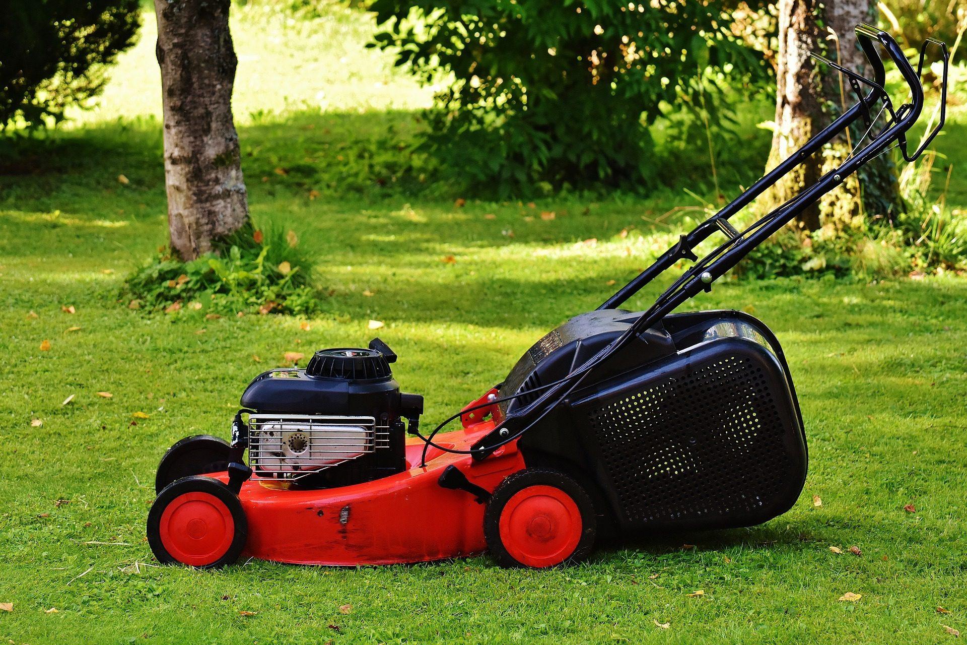 Maintaining Your Garden During Lockdown