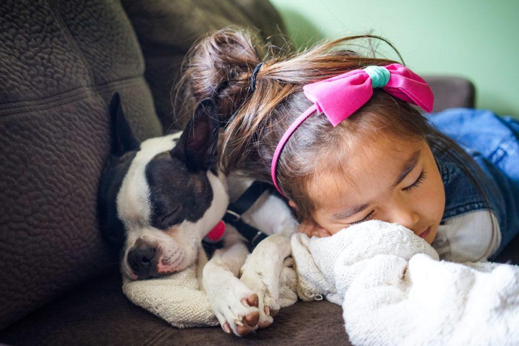 Sleeping child and dog