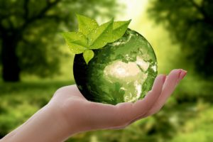 Ways to Help the Earth and Yourself at The Same Time