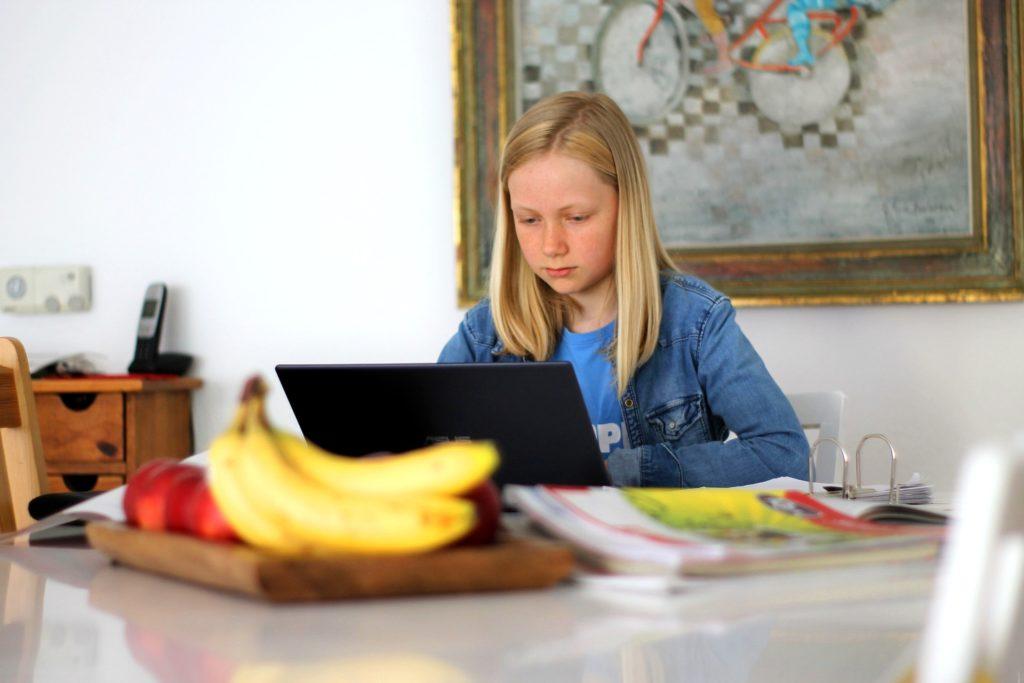 Virtual Classrooms