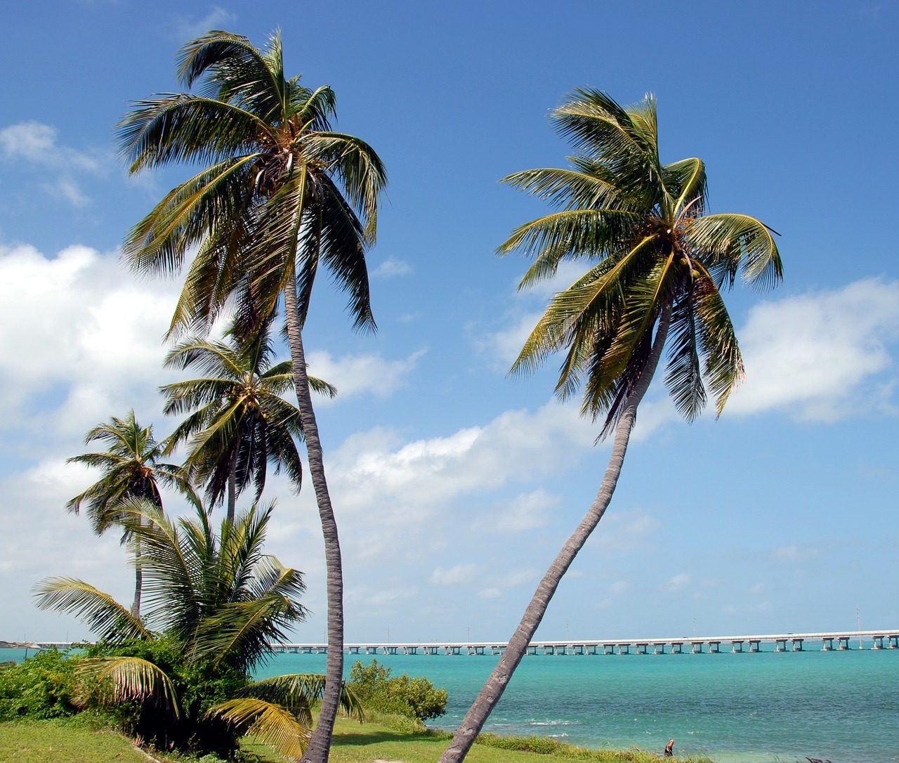 Hit the Highlights in Key West