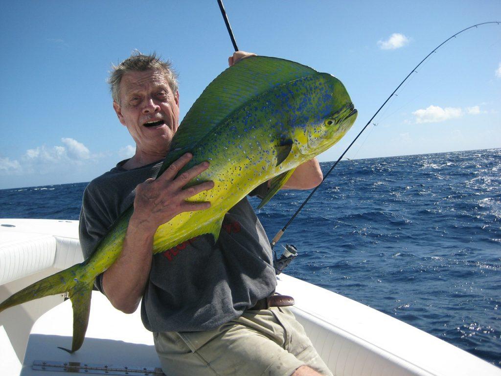 Take a fishing cruise