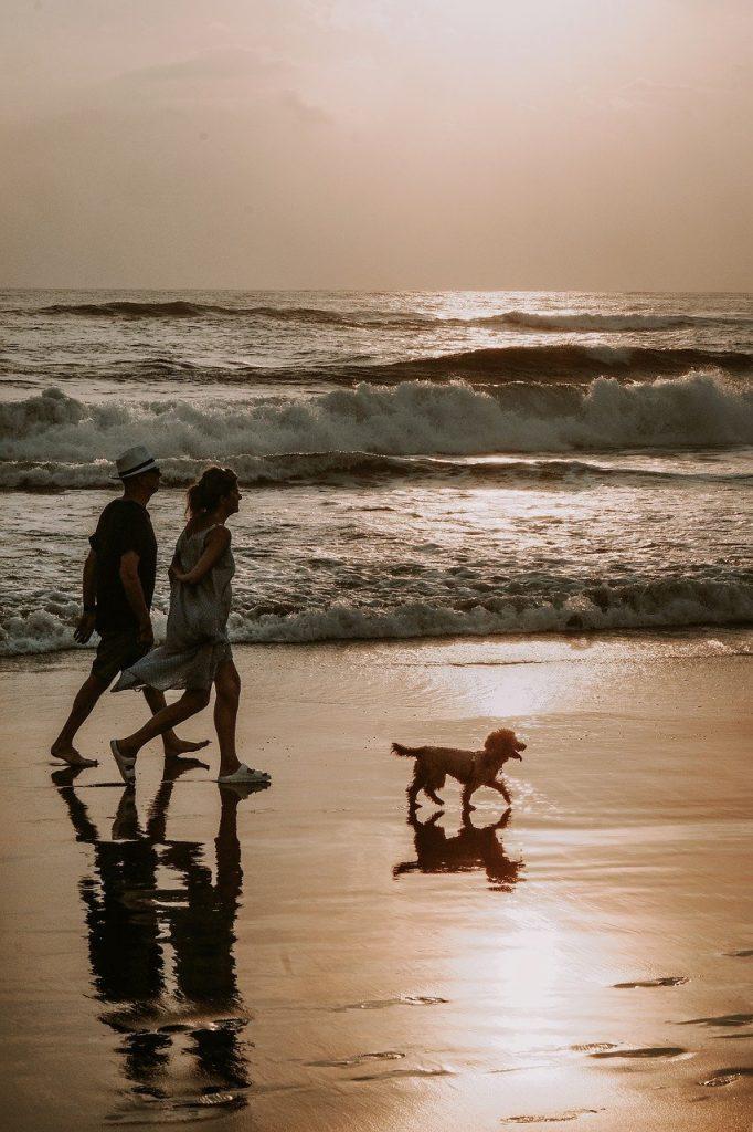 Walking by the ocean