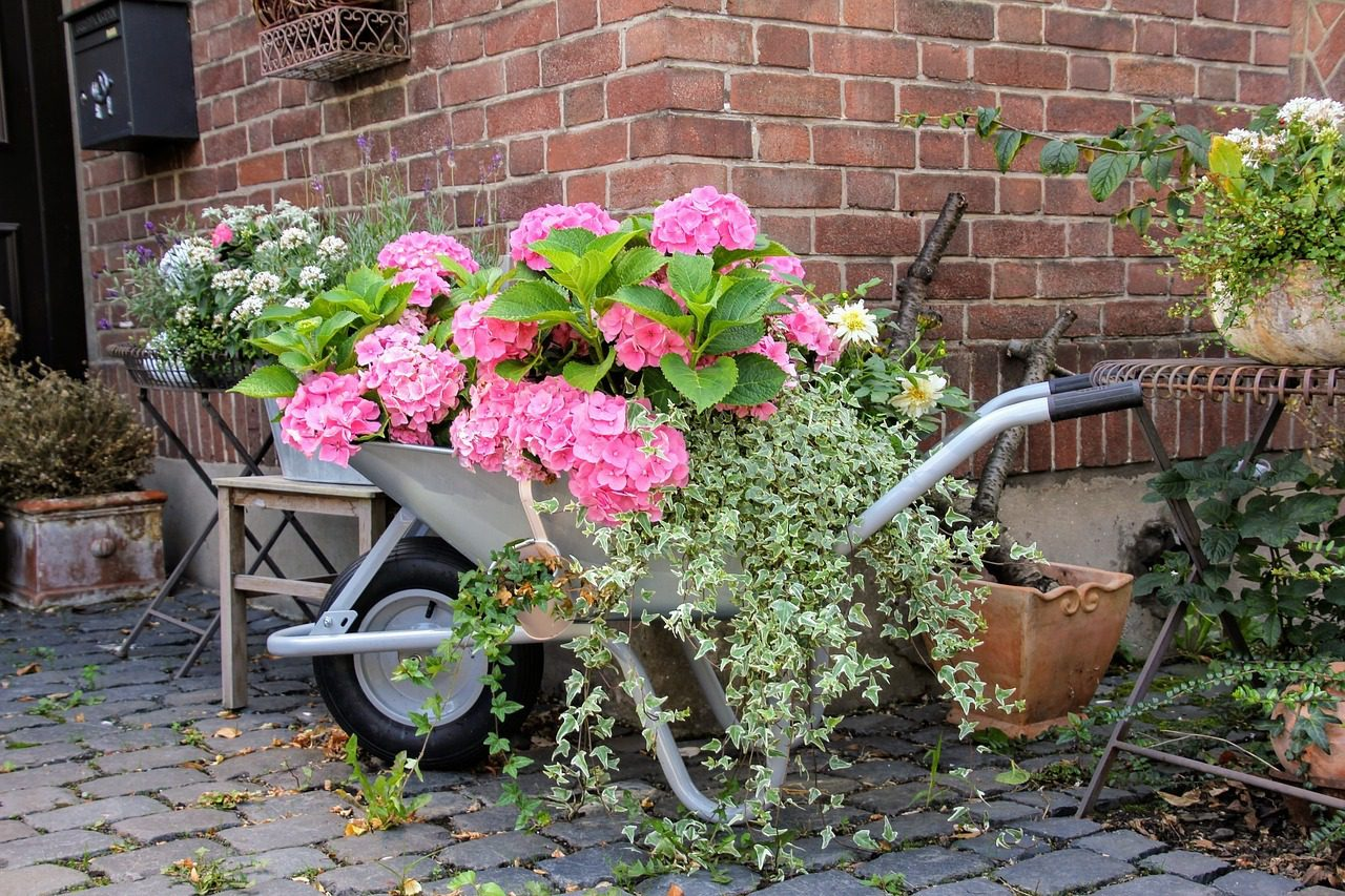 You are currently viewing Start your do-it-yourself journey: recreate your garden environment