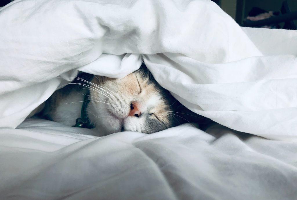 Get a sleep routine