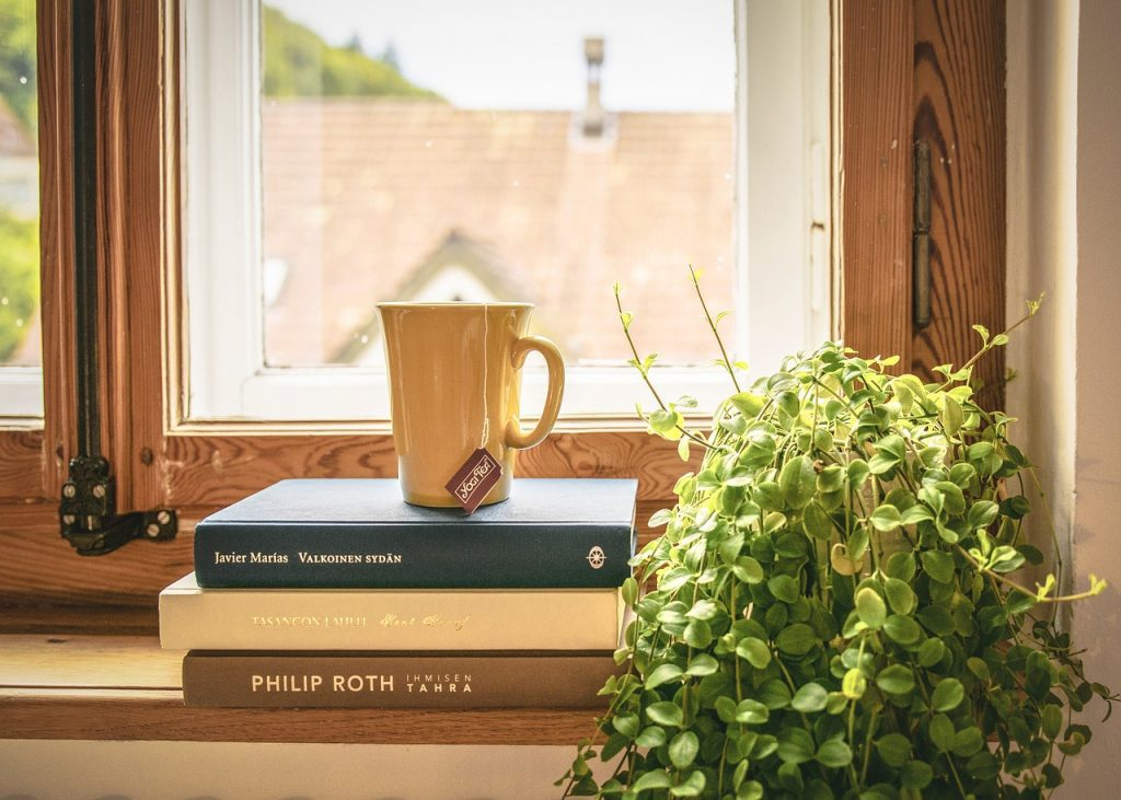 Books and houseplant
