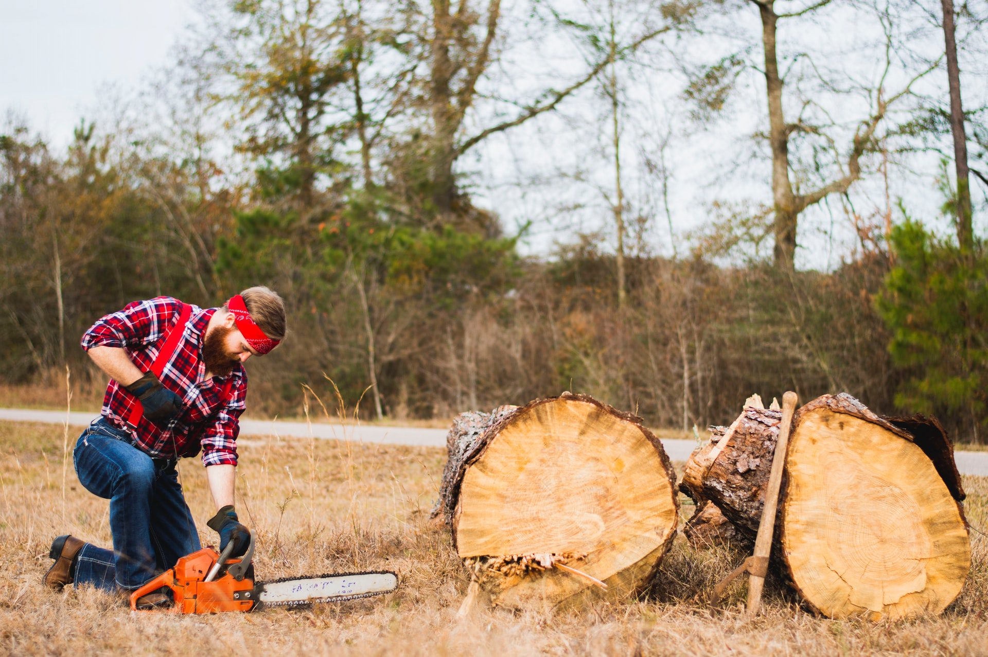 You are currently viewing How To Pick The Right Chainsaw That Will Do The Job