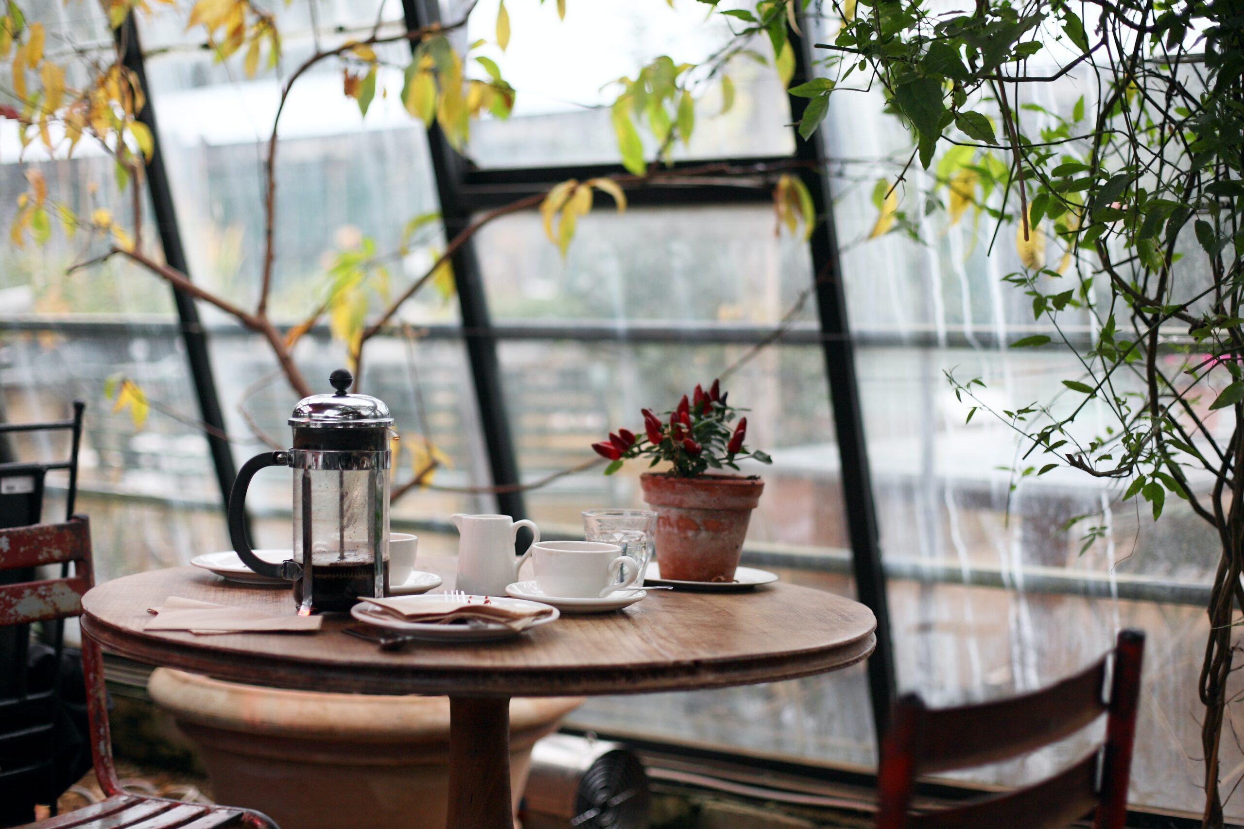 You are currently viewing 5 Reasons to Buy a Large French Press