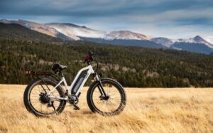 Read more about the article 6 Reasons Why Owning An E-bike Can Positively Change Your Life