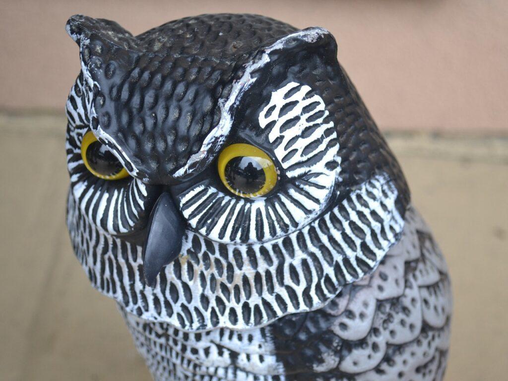 Owl decoy