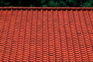 Read more about the article Roof Maintenance: How to Properly Take Care of Your Roof