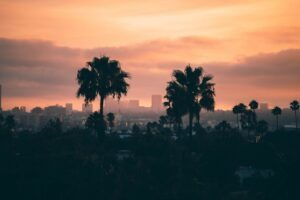 Read more about the article 6 Fun Ways to Discover Los Angeles and Create Unforgettable Memories