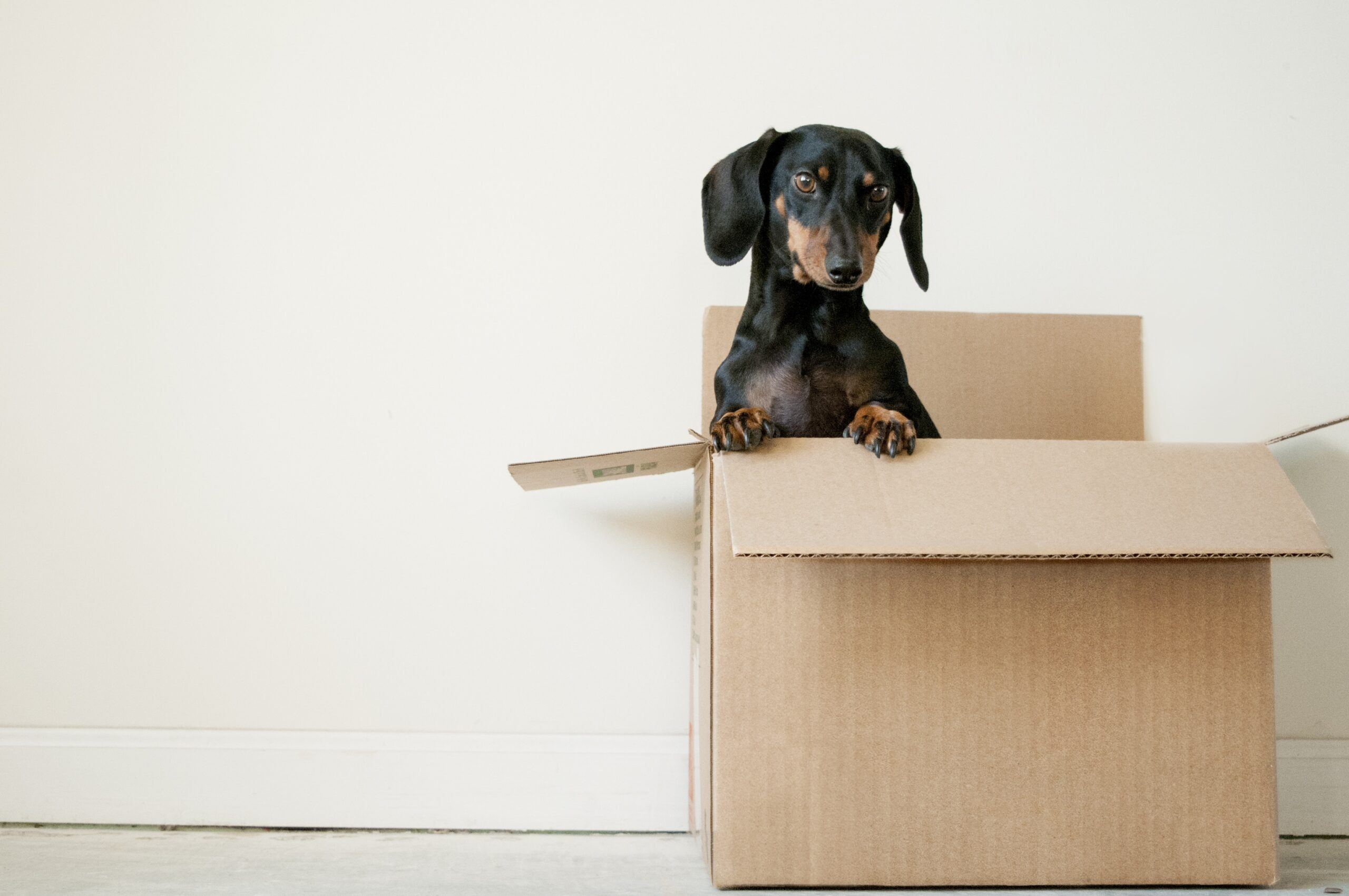 You are currently viewing A 6-Point Checklist to Help You with Your Big Move