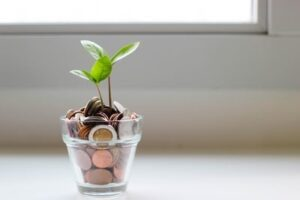 Read more about the article Roth IRA: Things You Need to Know Before Opening an Account