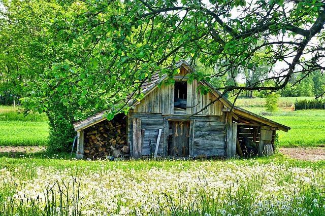 You are currently viewing The Benefits of Having Your Own Shed