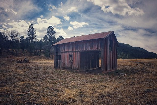 Shed in the field
