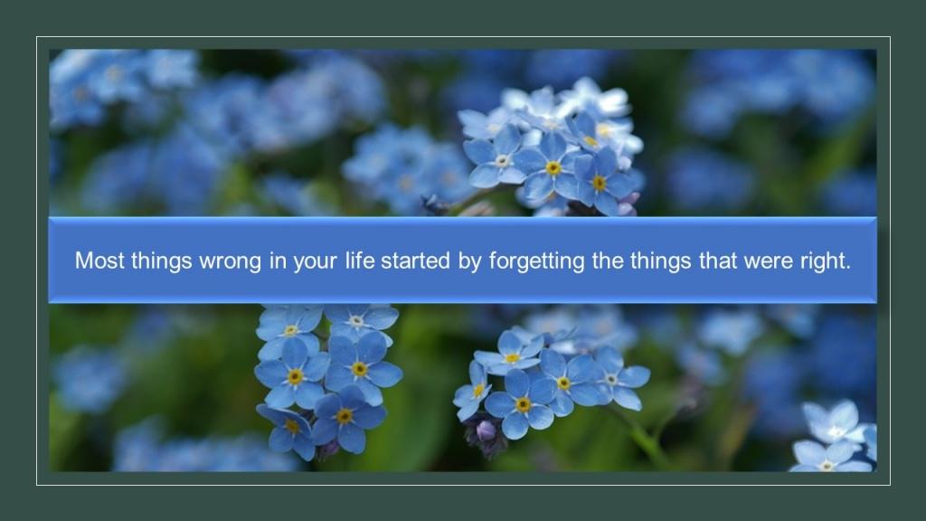 Most things wrong.jpg