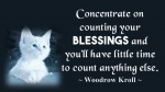 Concentrate on counting your BLESSINGS .jpg