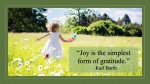 Joy comes from gratitude.jpg