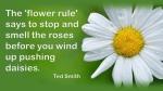 Flower Rule.jpg