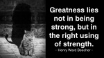 Greatness lies not in being strong.jpg