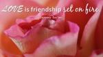 LOVE is friendship set on fire.jpg