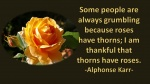 Thankful-thorns.jpg