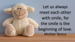 Smile-Mother Theresa.jpg